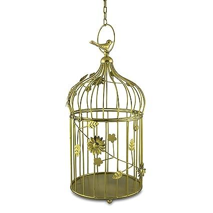 Amazon Com Home Sake Golden Bird Cage With Floral Vine