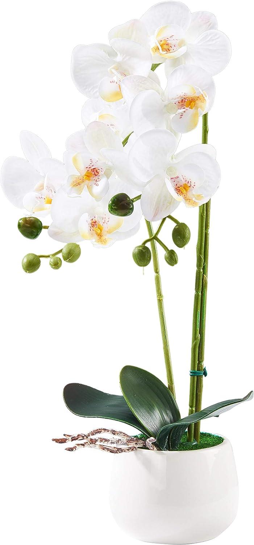 ENCOFT Fiori Artificiali di Orchidea con Vaso Decorative Pianti per Casa 30x12 x 12 Bianco