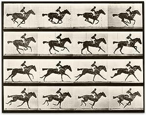 Lone Star Art 1887 Muybridge's Horse Galloping Vintage Print - 11x14 Unframed Print - Perfect Stable or Farm Decor Under $15