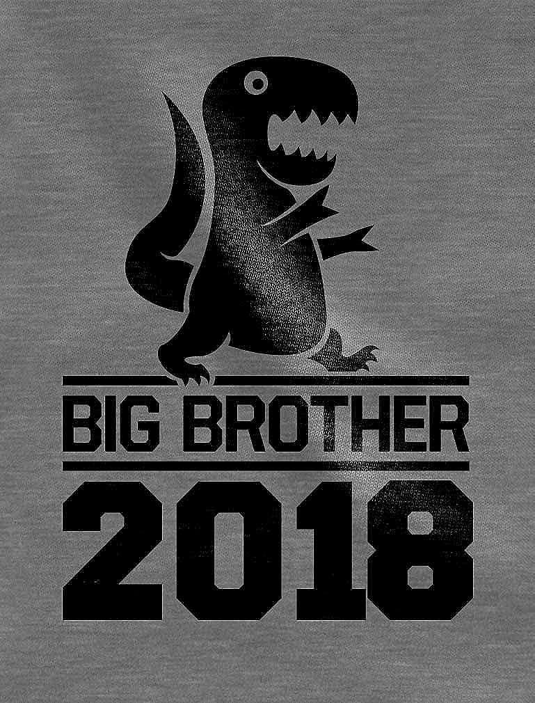Tstars Gift for Big Brother 2018 T-Rex Boy Toddler//Kids Sweatshirt