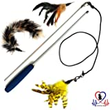 Pet Fit For Life Multi Feathers and 1 Soft Teaser/Exerciser Interactive Cat Wand For Your Cat or Kitten