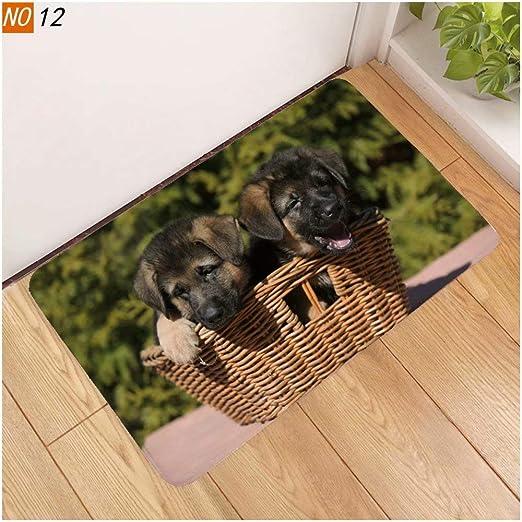 Two Black Puppies Door Mats, Interior Door Mats Super Absorbent ...