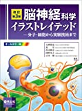 改訂第3版 脳神経科学イラストレイテッド〜分子・細胞から実験技術まで