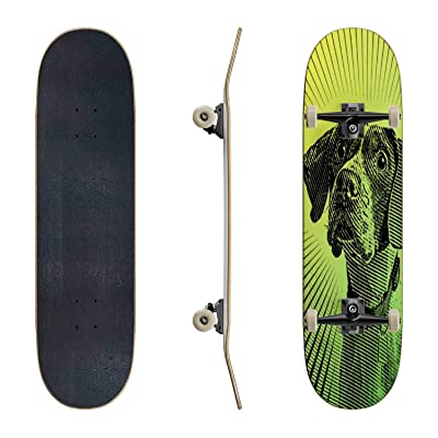 EFTOWEL Skateboards Pointer Dog Hoping to be Adopted Lonely Stock Illustrations Classic Concave Skateboard Cool Stuff Teen Gifts Longboard Extreme Sports for Beginners and Professionals : Sports & Outdoors