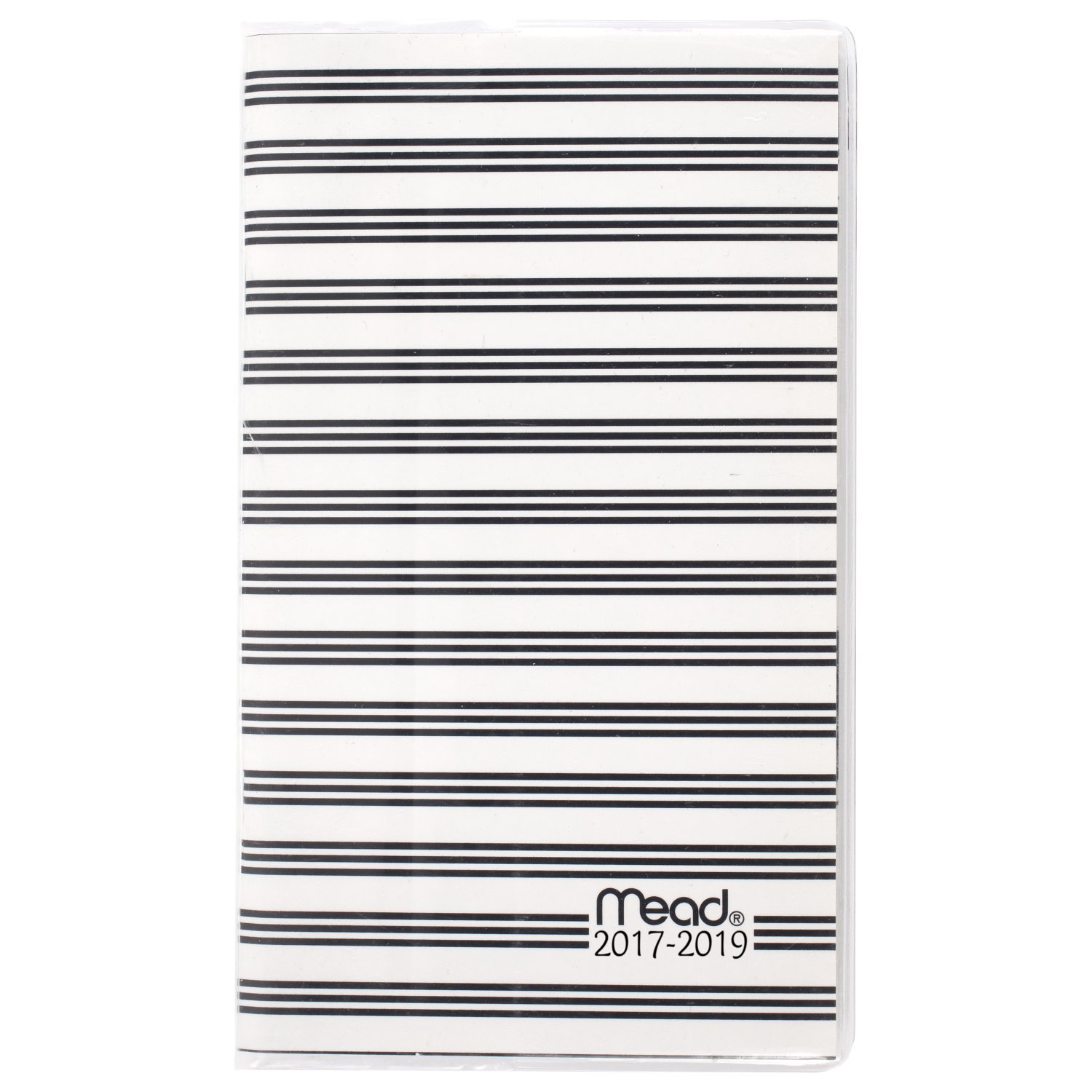 Mead Academic Year Monthly Planner / Appointment Book, July 2017 - June 2019, 2 year, 3-3/8 x 6-3/16'', School, Simplicity, Stripes (CAM301D2)
