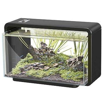 Superfish Home 25 L Acuario (Black) – incluyendo luces LED y filtro de agua