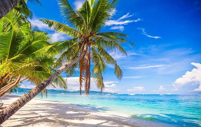 GoEoo 7x5ft Coconut Tree Backdrop Dusk Seaside Coconut Tree Photography Backdrops Photo Studio Background Props LYNAN417