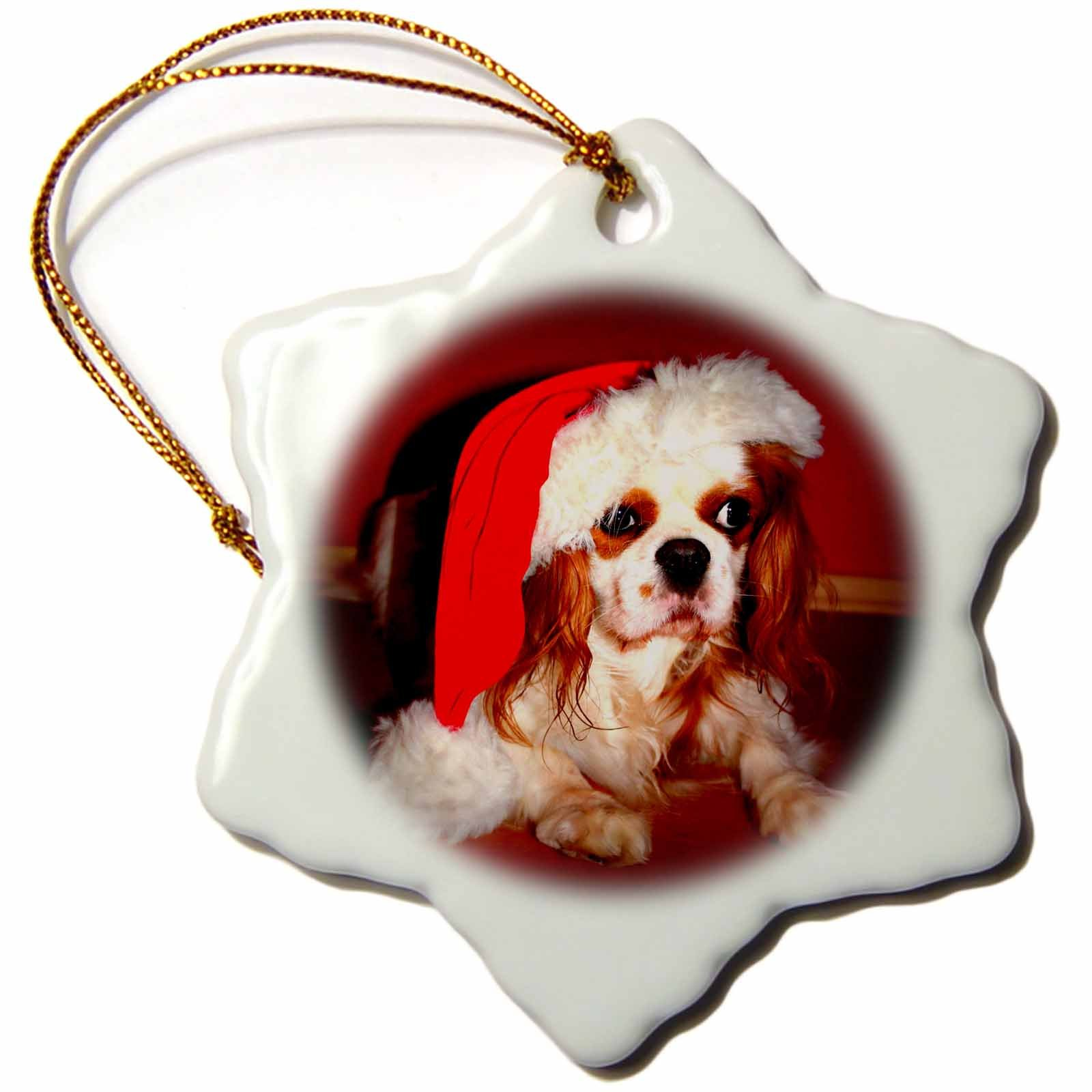 3dRose Sandy Mertens Christmas Animals - Christmas Hat on Adorable Cavalier King Charles Spaniel Dog - 3 inch Snowflake Porcelain Ornament (orn_269510_1)