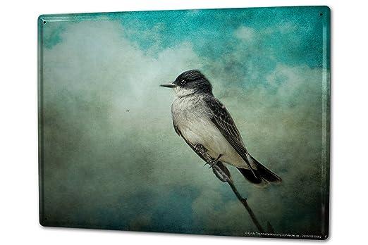 Blechschild XXL Vogel Vogel