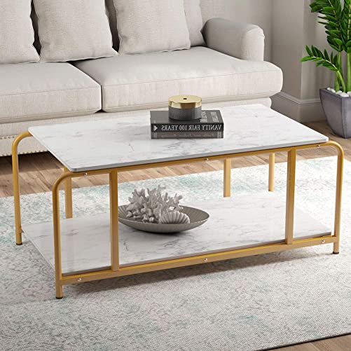 Tribesigns Modern Coffee Table with Storage Shelf for Living Room, Faux White Faux Marble Look Accent Furniture with Gold Metal Frame, Easy Assembly, 19.68 H x 47.24 W x 23.62 D
