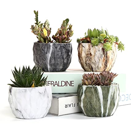 Amazon.com  SUN-E Modern Style Marbling Ceramic Flower Pot Succulent/Cactus Planter Pots Container Bonsai Planters with Hole 3.35 Inch Perfect Gift Idea(4 ...  sc 1 st  Amazon.com & Amazon.com : SUN-E Modern Style Marbling Ceramic Flower Pot ...