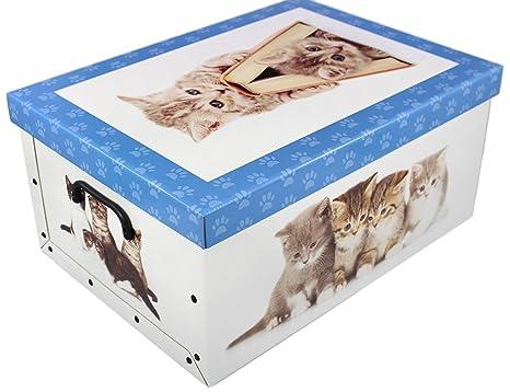 Unbekannt Caja Gatos Nuevo cartón rígido 51 x 37 x 24 cm – Azul