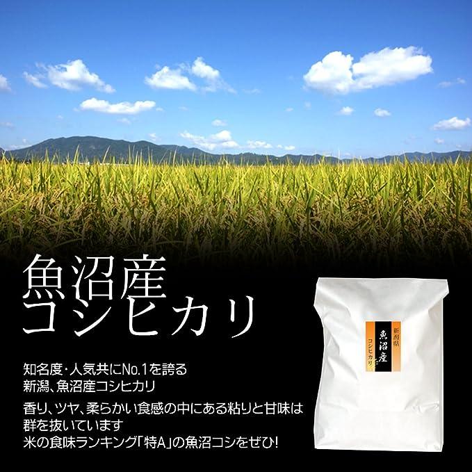 米 ランキング お 人気