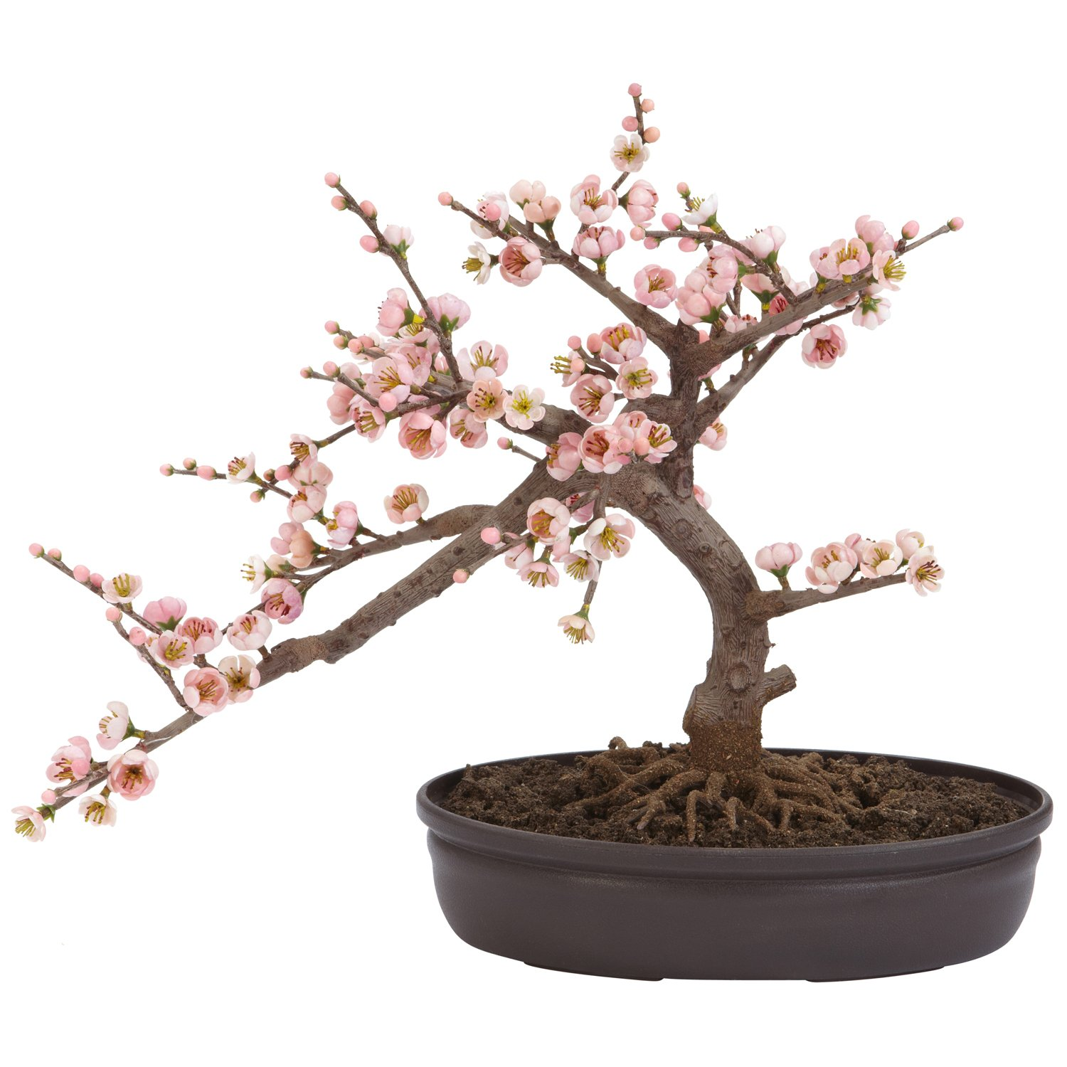 Amazon.com: Nearly Natural 4764 Cherry Blossom Bonsai Artificial Tree,  Pink: Home & Kitchen