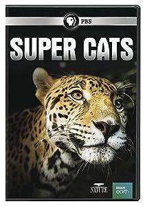 Nature: Super Cats DVD