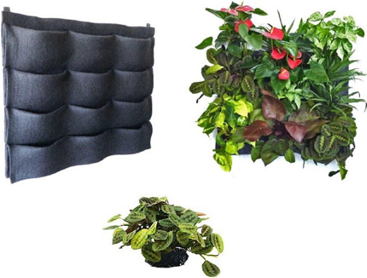 Exterior Interior vertical Bolsillos macetas jardín pared para colgar macetas crecer bolsa para hierbas/verduras/Flores, 12 Pockets 3x4: Amazon.es: Jardín