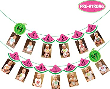 Watermelon Photo Banner 1st Birthday Monthly Banner Baby Girl 12 Month Photo Display Milestone Photograph Bunting Garland One In a Melon Party ...