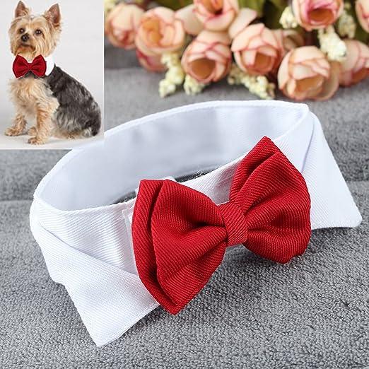 Pinzhi Corbata de Lazo Pajarita Collar para Perro Perrito Mascotas ...