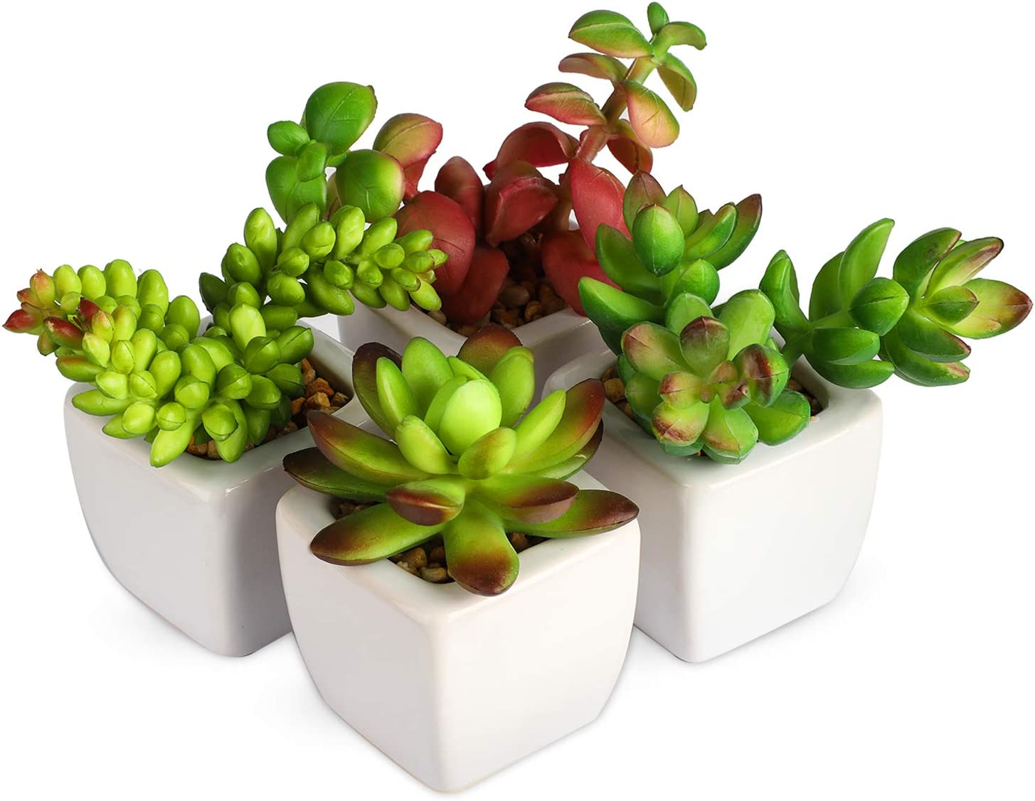 Myartte Home Decor Office Decor-Artificial Shrubs Artificial Succulent Plants Mini Fake Plants for Beautifying Our Life and Home Environment (White C)