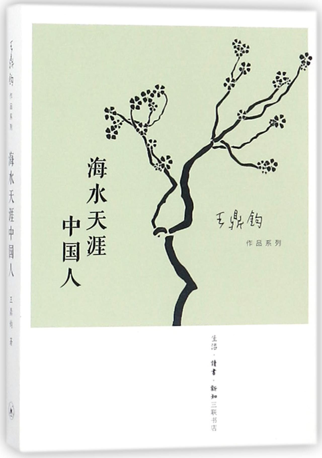 Download Chinese at the Other Side of the Ocean/ Series Works of Wang Dingjun (Chinese Edition) ebook