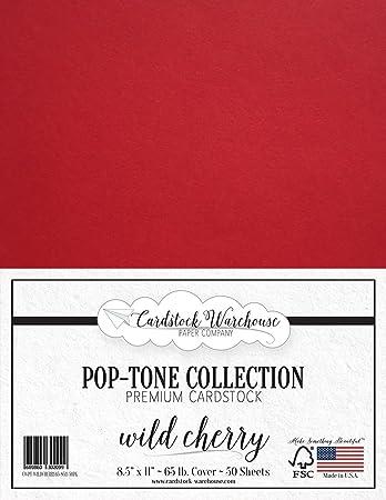 Amazon.com: POPTONE - Papel de cartulina (8.5 x 11.0 in ...