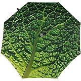 Details Of Lettuce Automatic three-fold umbrella Lightweight One-click Sunny umbrella
