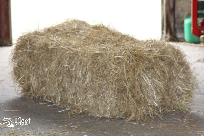 Foin pour chevaux–environ 20kg/100x 50x 40cm–Livré dans une boîte–Free P & P Fleet Farm