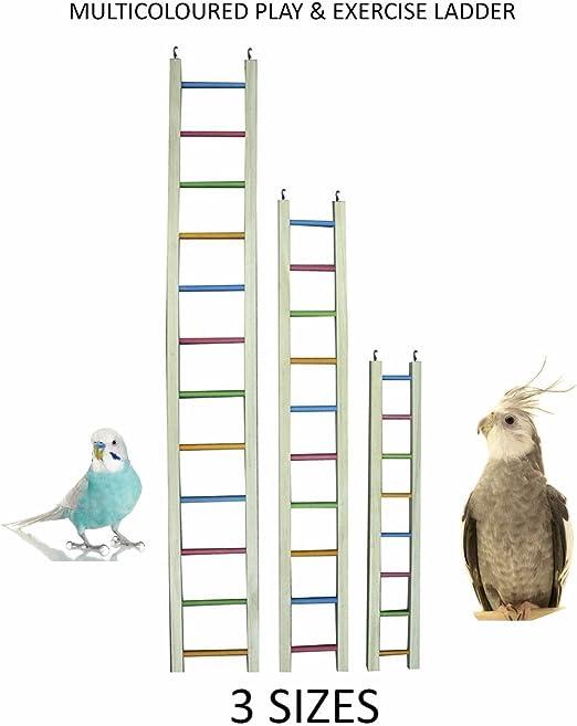 Happypet® Grande jaula escalera de pájaros loro, Cockatoo, Conure, Macaw, Parakeet, Cockteil: Amazon.es: Productos para mascotas