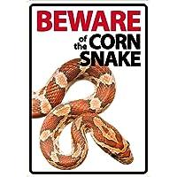 Magnet & Steel Cuidado de la Serpiente
