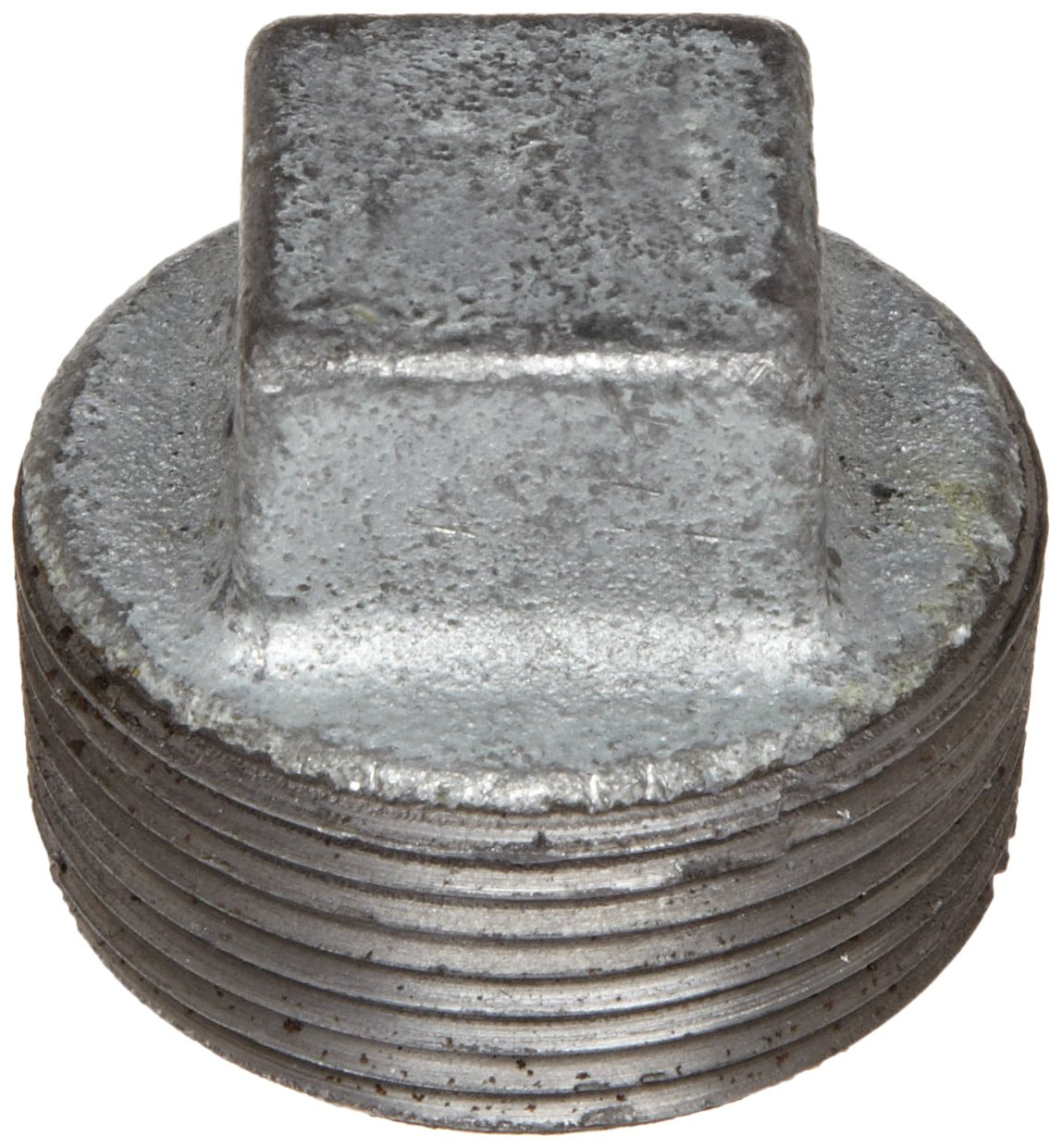 Anvil 8700159901, Malleable Iron Pipe Fitting, Square Head Plug, 3/4 NPT Male, Galvanized Finish by Anvil International ANVIL INTERNATIONAL INC