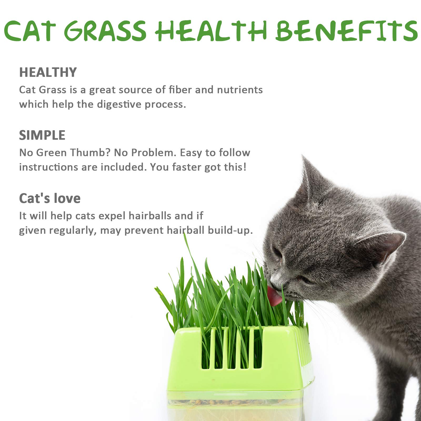 KORAM Cat Grass Growing Kit Organic Pet Grass Kit with Oats Rye Wheat Seeds Trays & Soil Natural Hairball Control Healthy Treat for Cats