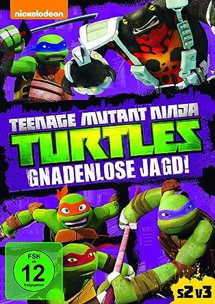 Teenage Mutant Ninja Turtles: Gnadenlose Jagd [DVD]: Amazon ...