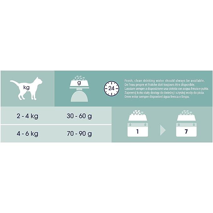 Purina Cat Chow Esterilizado Gato Adulto Pollo 15 Kg: Amazon.es: Productos para mascotas