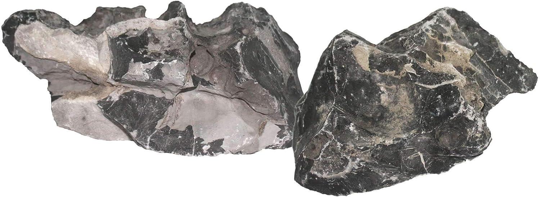 ICA TR35 Rocas Naturales Bio