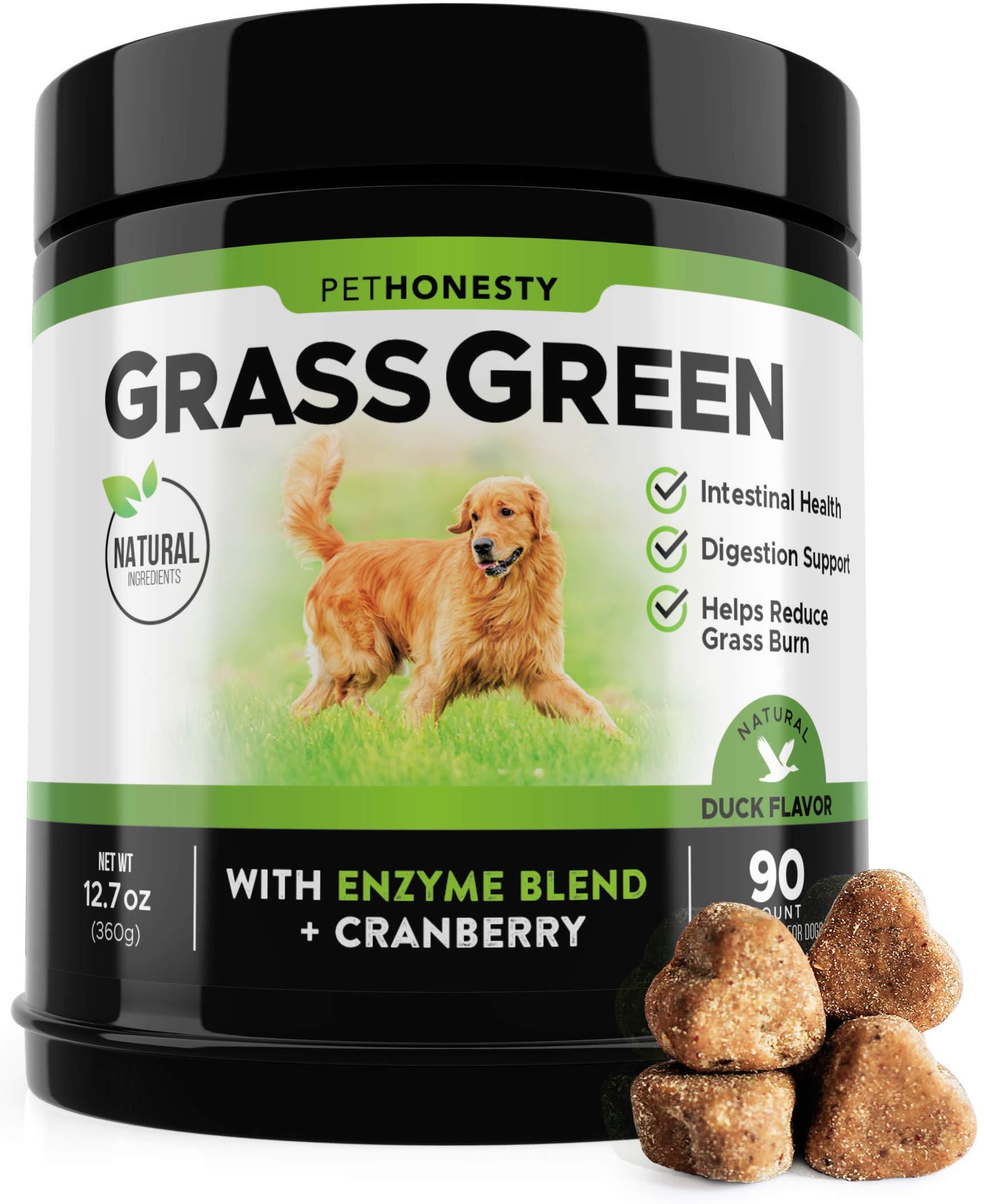 PetHonesty GrassGreen Grass Burn Spot Chews for Dogs - Dog Pee Lawn Spot Saver Treatment Caused by Dog Urine - Cranberry, Apple Cider Vinegar, DL-Methionine Grass Treatment Rocks - 90 Chew Treats 1