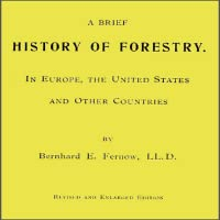 A Brief History of Forestry
