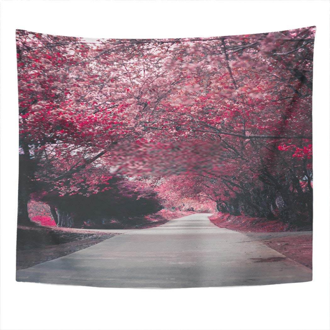 Janyho Tapestry Path Way of Pink Cherry Blossom Tree Along Two Side of The Perspective Road Wall Hanging Bedroom Living Room Home Picnic Beach Towel Print Polyester