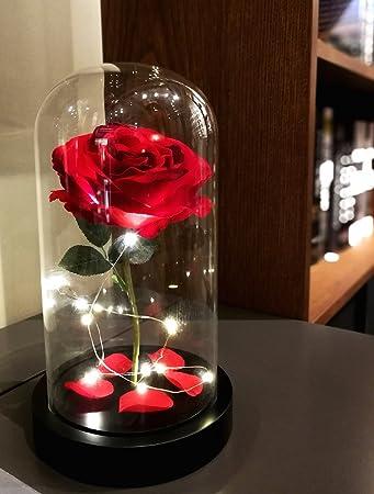 Amazoncom Homeseasons Beauty And The Beast Enchanted Led Red