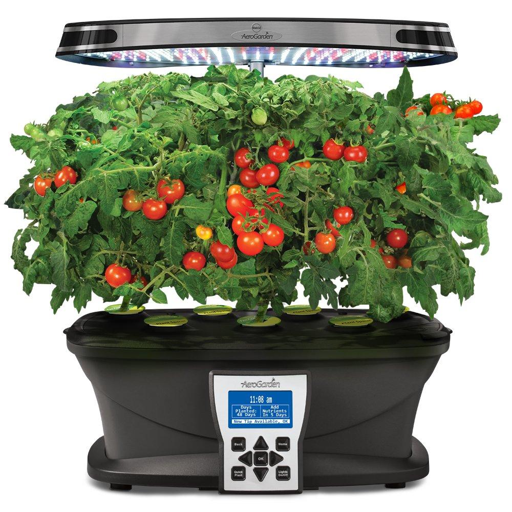 amazoncom aerogarden red heirloom cherry tomato kit for ultra extra classic 7 models plant germination kits garden outdoor - Areo Garden
