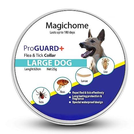 MagicHome Collar Antiparasitario para Perros contra Pulgas, Garrapatas y Mosquitos, Gris