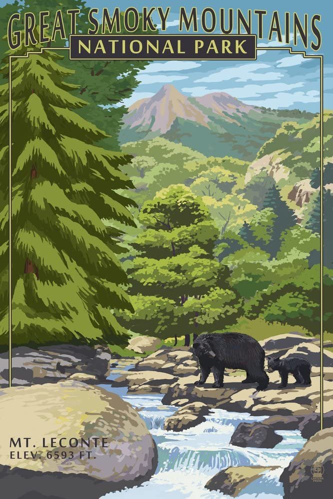 Great Smoky Mountains National Park, Tennesseee, Leconte Creek and Mt. Leconte Press 41013 (9x12 Art Print, Wall Decor Travel Poster)