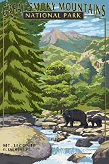 product image for Great Smoky Mountains National Park, Tennesseee - Leconte Creek and Mt. Leconte (12x18 Art Print, Wall Decor Travel Poster)