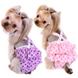Alfie Pet - Frona Diaper Dog Sanitary Pantie with Suspender for Girl Dogs
