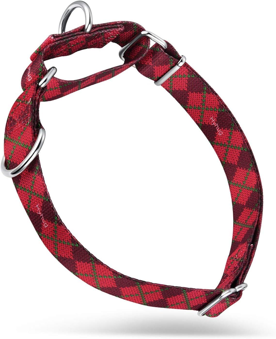 Hyhug Cuello de martingala Mejorado para adiestramiento para Caminar en Perros medianos - Etiquetas y Accesorios de identificación con Doble Anillo de sujeción (Medio M, Rojo Sueter)