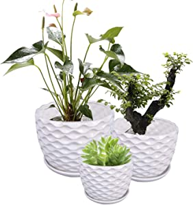 Ufrount White Ceramic Planter Pot with Drainage Holes, Succulent Planter Pots Planting Pot Flower Pots for Mini Plant Perfect for Garden, Kitchen, Windowsill - Set of 3 (3 Sizes)