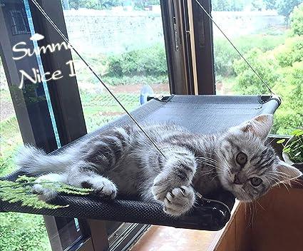 Gato Hamaca Pet Suministros Ventosa Colgante Cama Colgante Gato ...