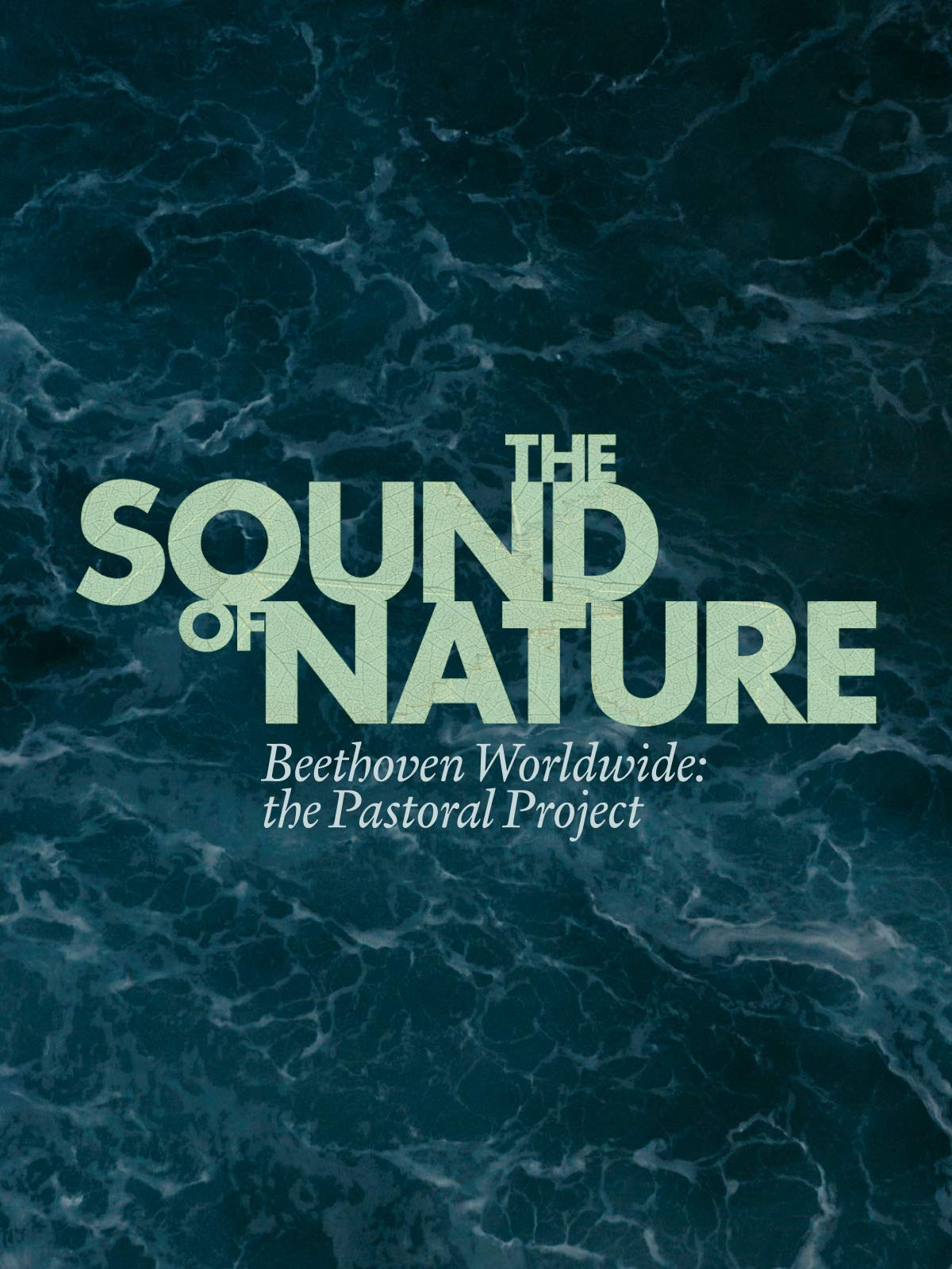 The Sound of Nature Beethoven Worldwide: the Pastoral Project