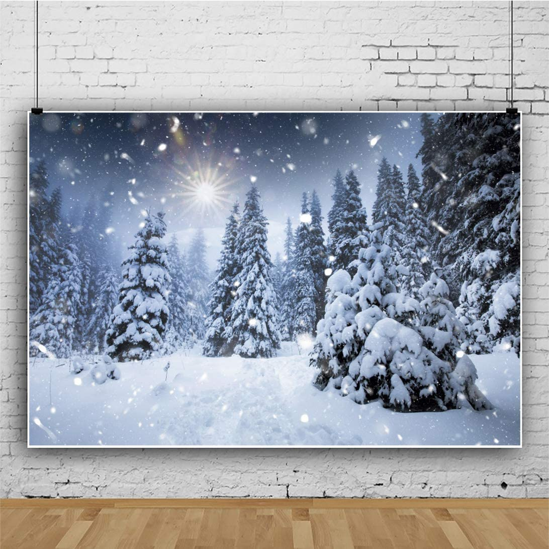 Haoyiyi 12x8ft Winter Wonderland Backdrop Falling Snowflake Bokeh Glitter Dots Background Photography Photo Merry Christmas Xmas Eve Party Travel New Year Photo Booth Studio Props Supplies