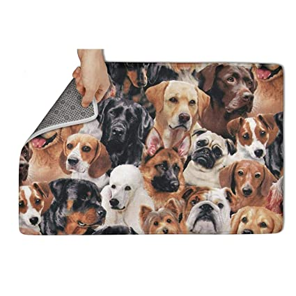 Amazon Com Wardell Indoor Outdoor Carpet Entrance Dog Breeds