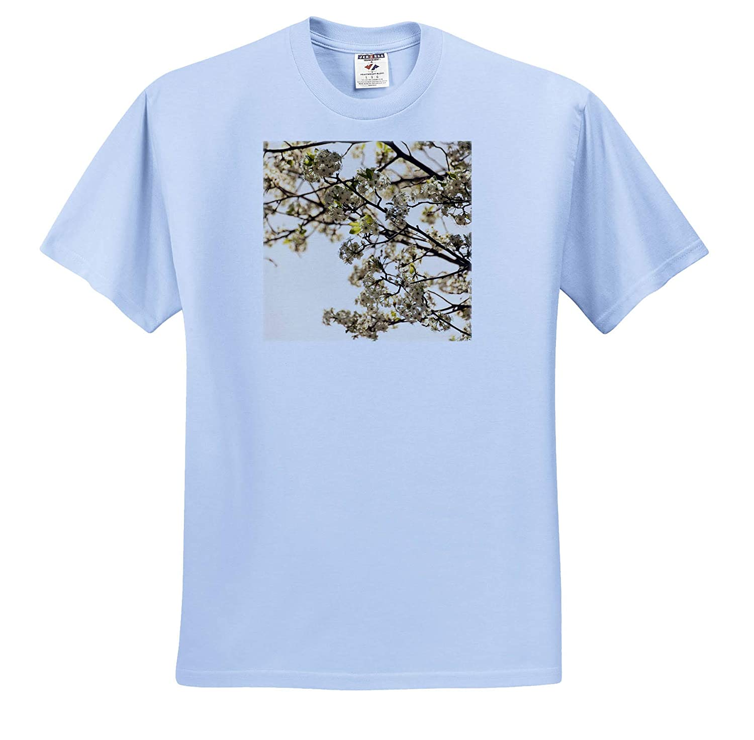 A Warm Flowering Tree That is in The Sunlight in Spring Adult T-Shirt XL ts/_319594 3dRose Jos Fauxtographee- Blossoms